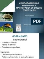organismos del suelo.pdf