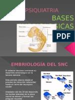 Embriologia fisiologia psiquiatrica