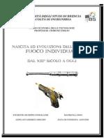 9516_2010.4.22_armi Da Fuoco Individuali
