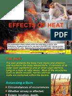 08 Effects of Heat_Tan