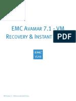 EMC Avamar 7.1 - VM Recovery & Instant Access