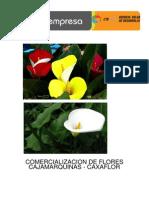 Estudio de prefactibilidad para la creacion de una floreria en la ciudad de Cajamarca