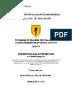 Informe Final de La Propuesta Para Presentar
