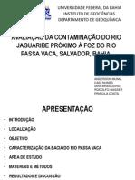 AVALIAÇÃO DA CONTAMINAÇÃO DA RIO Jaguaribe