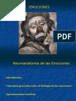 emociones-1235051365524054-2
