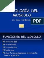 Fisiologia Del Musculo