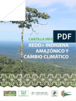 REDD+ INDÍGENA AMAZÓNICO Y CAMBIO CLIMÁTICO