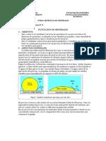Pract N_ 6 Flotacion de Minerales
