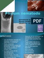 Philum-nematodo-zoologia