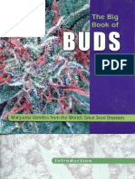 9701254 Cannabis Big Book of Buds