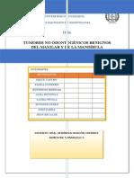 Tumores no odontogenicos grupo 3 radiologia.docx