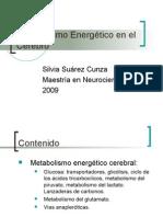 Metabolismo+Energético+en+el+Cerebro