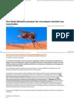 Une Étude Démontre Pourquoi Les Moustiques Résistent Aux Insecticides - Science - RFI