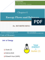 Chapter 6. Energy Flows and Balances
