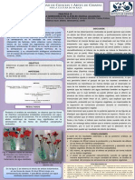 Mfv1 Practica 13