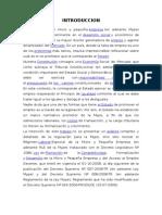 MYPES EN EL PERU.docx