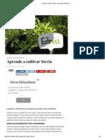 Aprende a Cultivar Stevia - Barcelona Alternativa