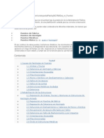 Patologia Puentes..