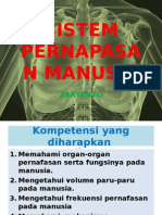 Sistem Pernapasan Manusia 4