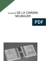 Usos de La Camara Neubauer i Practica (1)