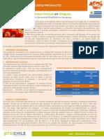 1447099145FMP_Uruguay_Tomates_2015