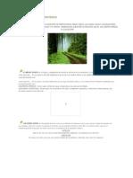 El Ecosistema Definición