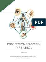 Percepción Sensorial y Reflejos