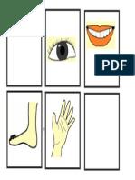 part of body 1