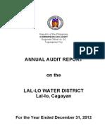 annual audit report 2012
