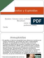 Aneuploidías y Euploidías[1]