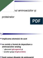 Metabolismul Aminoacizilor Şi Proteinelor