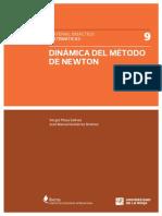 Dinamica Del Metodo Newton