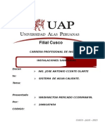 272012457-Agua-Caliente.docx