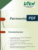 Fermentacion y polimerizacion