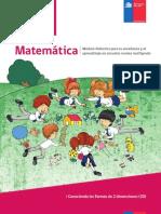 GUIA_CONOCIENDO LAS FORMAS 2D.pdf