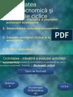 Instabilitatea Macroeocnomică Și Fluctuațiile Ciclice