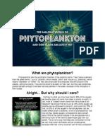 phytoplankton  1
