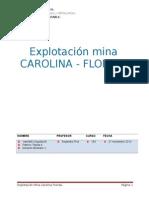 Explotacion Mina Carolina Florida