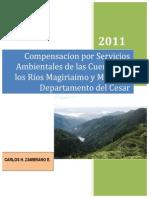 COMPENSACIÓN POR SERVICIOS AMBIENTALES DE LAS CUENCAS DE LOS RÍOS MAGIRIAIMO Y MARACAS, DEPARTAMENTO DEL CESAR