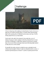 coyote challenge