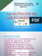 Nutricion en Ecosistemas Eco