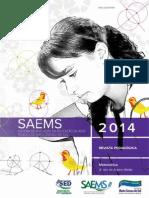 SAEMS-_RP-MT-3EM-WEB