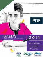 SAEMS-RP-LP-3EM-WEB