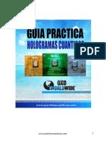 Guía Practica - Hologramas Cuánticos