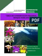 Bosque Nublado Amaru