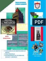 Monografia de Derecho Constitucional Completotote