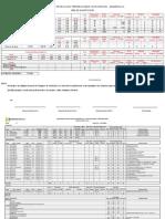 08 Prg Avances y Produccion Agosto 2015