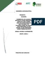 PRINCIPIOS DE CURACION.docx