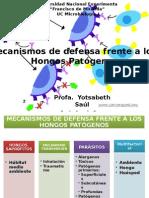 Mecanismos de defensa frente a hongos patogenos