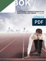 direccion_pmbok.pdf